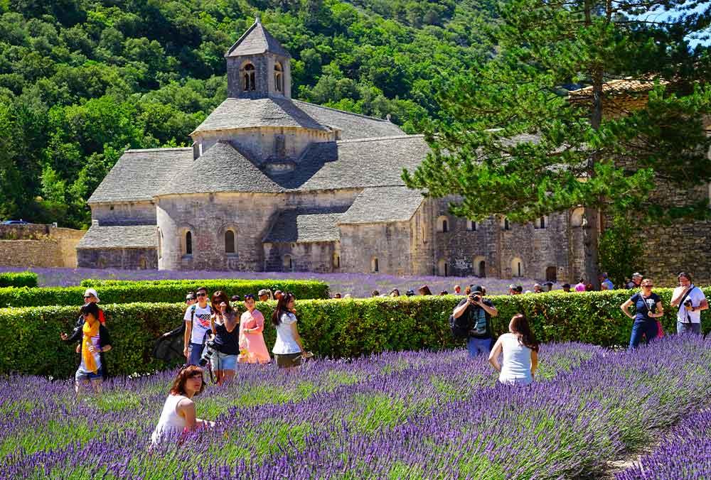 Abbey of Senanques & Gordes